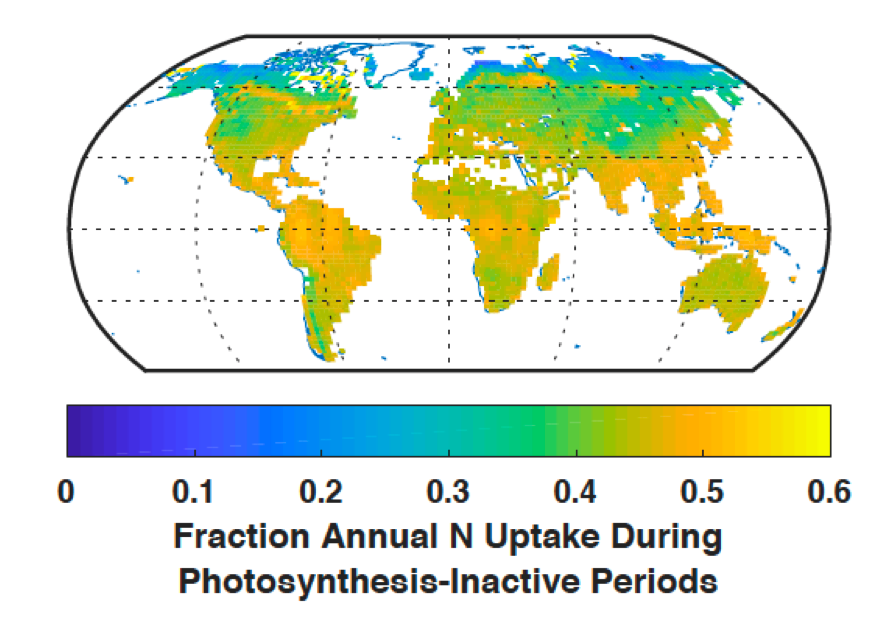 Global nitrogen and phosphorus uptake