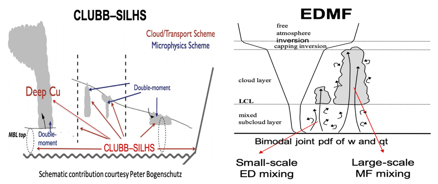 Schematic of CLUBB-SILHS and EDMF turbulent and convective processes