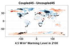 Warming-level Dependent Characteristics of Human-Earth System Feedbacks