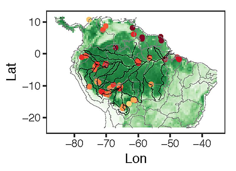 Amazon phosphorus study region