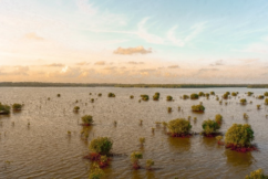 How Floods Start and Their Recent Trends
