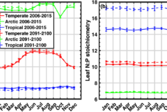 Seasonal fluctuation of CN and NP