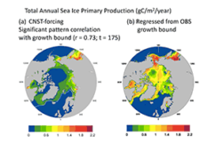 Investigating Controls on Sea-Ice Algal Production Using E3SMv1.1-BGC